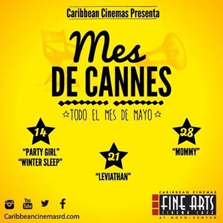 Mes de Cannes (2)