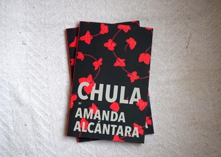 BOOK COVER PHOTO courtesy of AMANDA ALCANTARA2